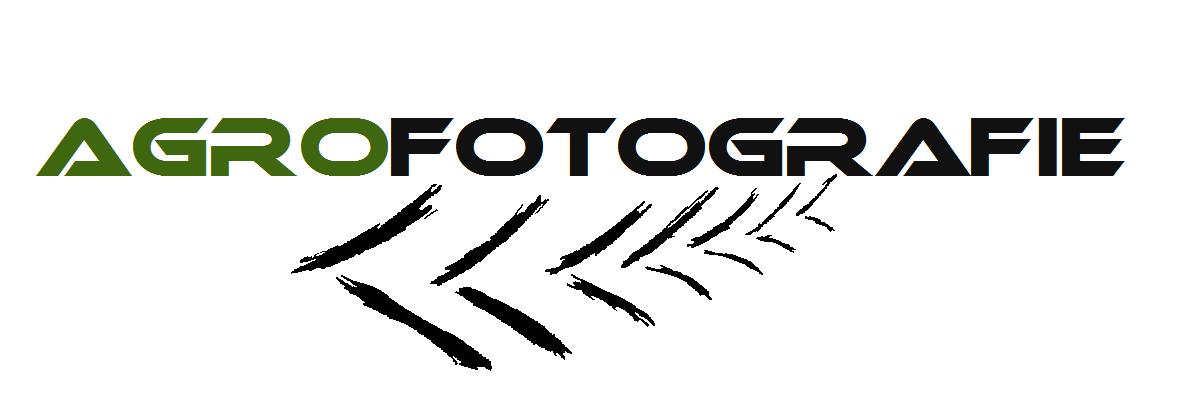 Logo wit doorzichtig