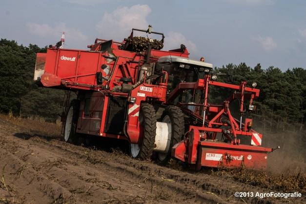 Deutz-Fahr + Grimme & Dewulf R3000 Mega-13