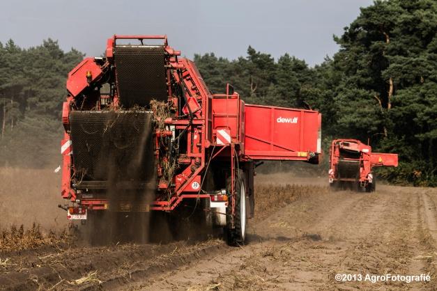 Deutz-Fahr + Grimme & Dewulf R3000 Mega-7