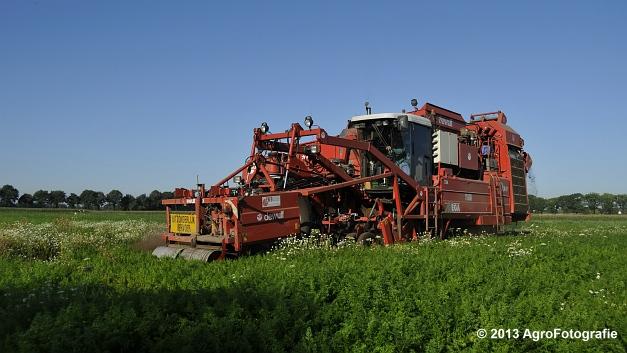 Dewulf R3000 MEGA (18)