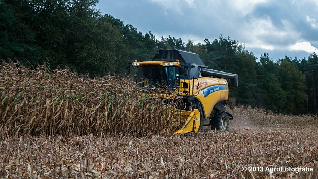 New Holland CX 8050 (6 van 20)