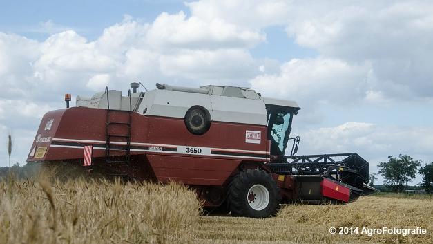 New Holland CX 7090 & Laverda 3650 (Vanbuel) (17 van 40)