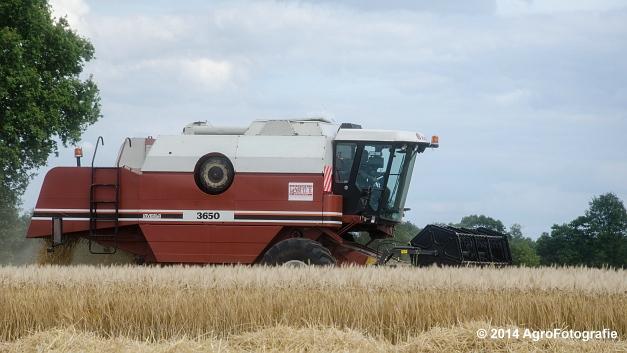 New Holland CX 7090 & Laverda 3650 (Vanbuel) (26 van 40)