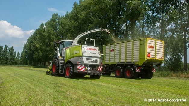 Claas JAGUAR 950 + 2x Fendt 916 (Jennissen) (8 van 24)