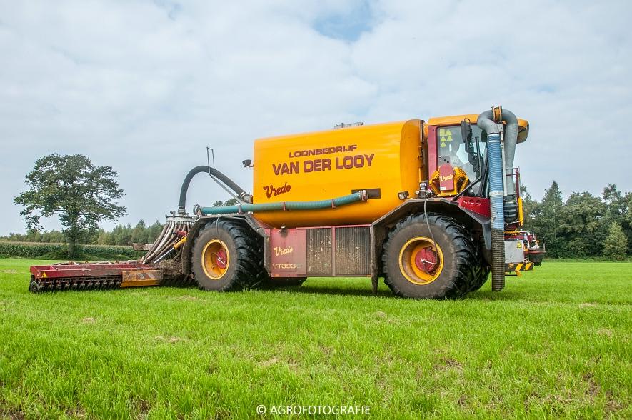 Vredo VT 3936 (Van Der Looy, grasland) (2 van 15)