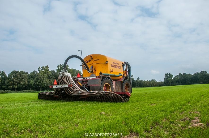 Vredo VT 3936 (Van Der Looy, grasland) (3 van 15)