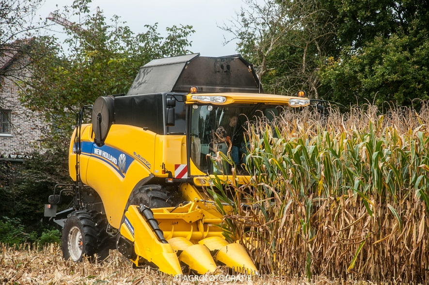New Holland CX 7090 (Maïs, Vanbuel) (10 van 16)