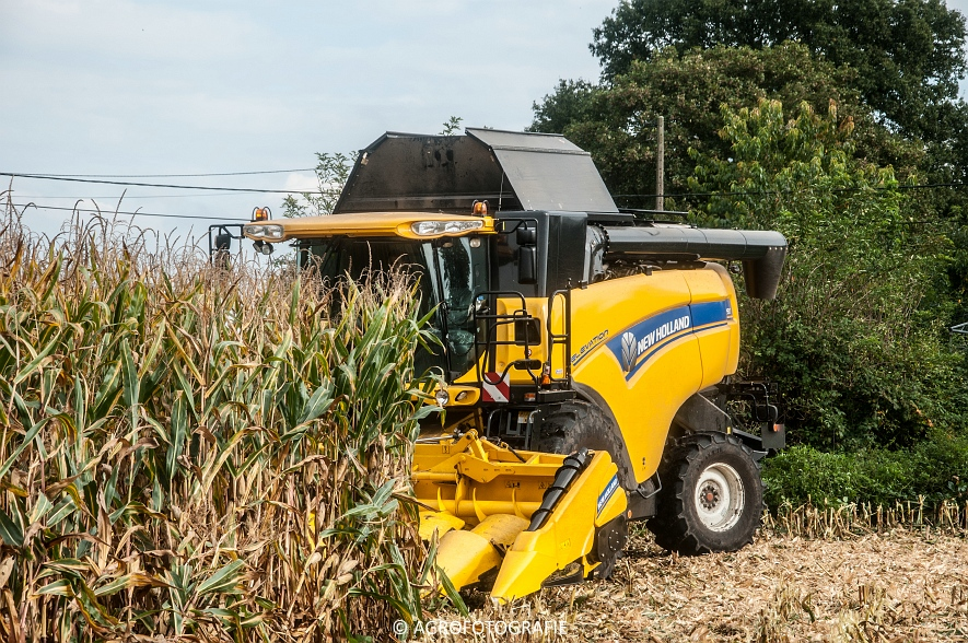 New Holland CX 7090 (Maïs, Vanbuel) (12 van 16)