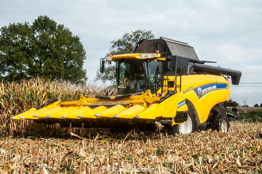 New Holland CX 7090 (Maïs, Vanbuel) (13 van 16)