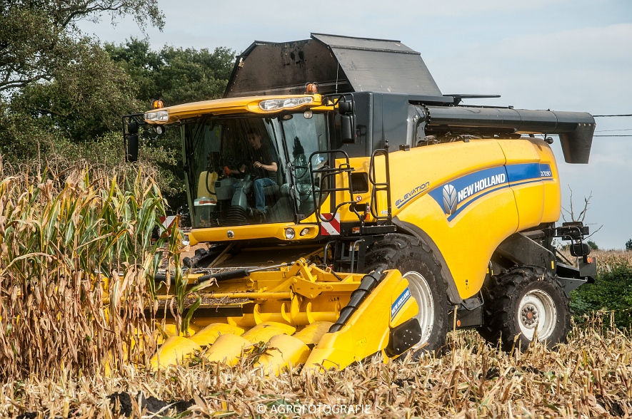 New Holland CX 7090 (Maïs, Vanbuel) (14 van 16)