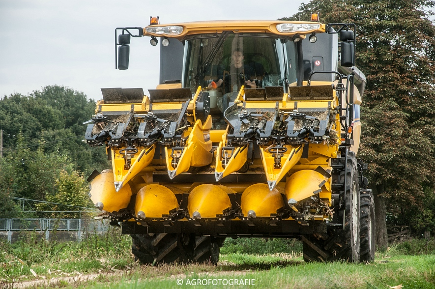 New Holland CX 7090 (Maïs, Vanbuel) (16 van 16)