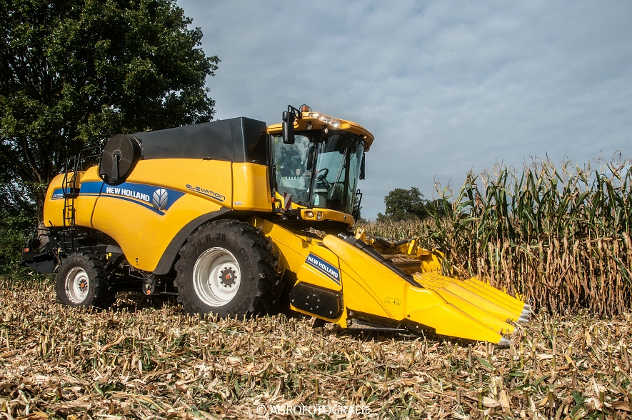 New Holland CX 7090 (Maïs, Vanbuel) (4 van 16)