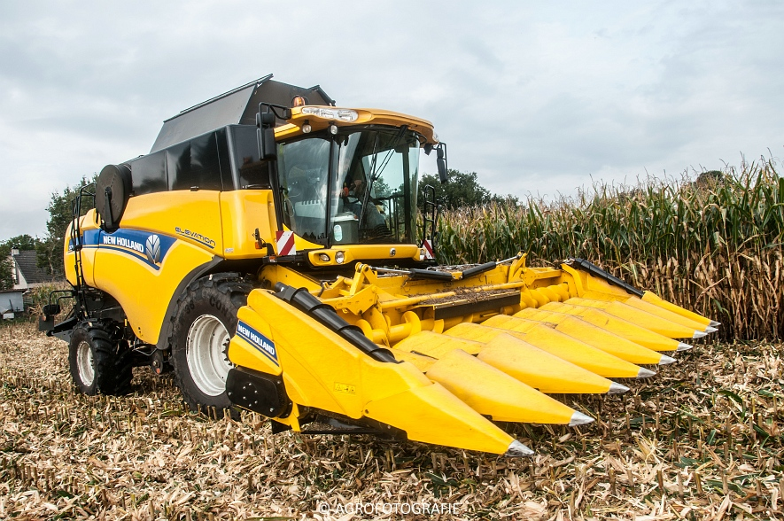 New Holland CX 7090 (Maïs, Vanbuel) (7 van 16)