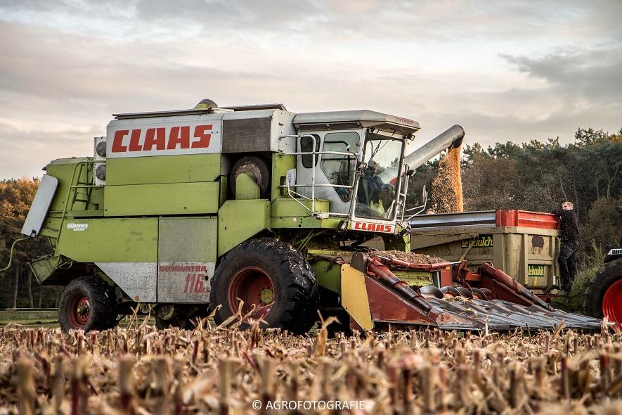 Claas Dominator (11)