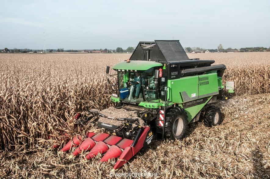 Deutz-Fahr 6090 HTS (maïs, weltjens) (10 van 12)