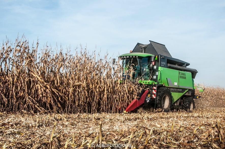 Deutz-Fahr 6090 HTS (maïs, weltjens) (8 van 12)