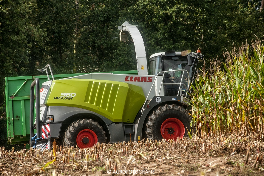 Claas JAGUAR 960 (Haveneers) (15 van 16)