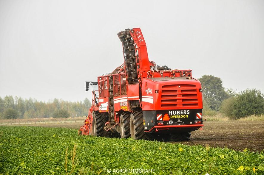 Grimme REXOR 630 (Hubers) (14 van 17)