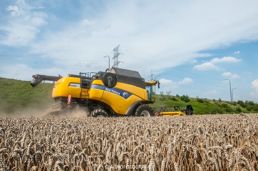 New Holland CX 8040  (4 van 13)