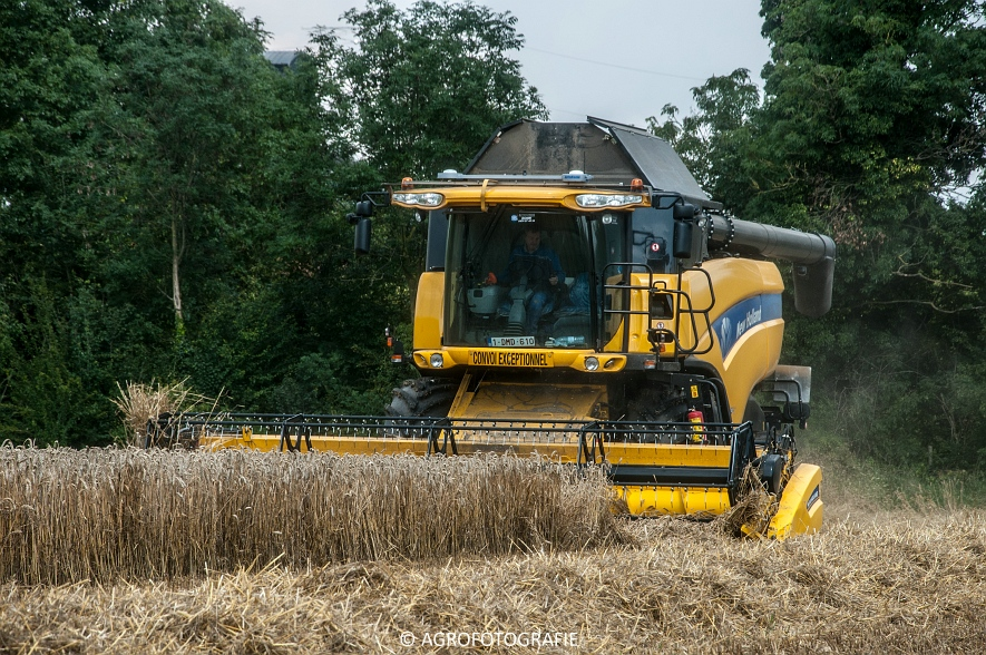 New Holland CX 8040  (6 van 13)