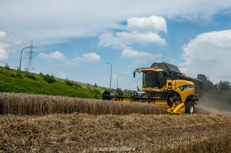 New Holland CX 8040  (8 van 13)