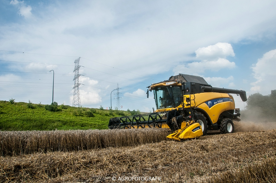 New Holland CX 8040  (9 van 13)