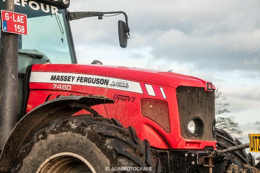 Massey Ferguson 7480 + Verstraete (Defour, knolsselder) (3 van 17)