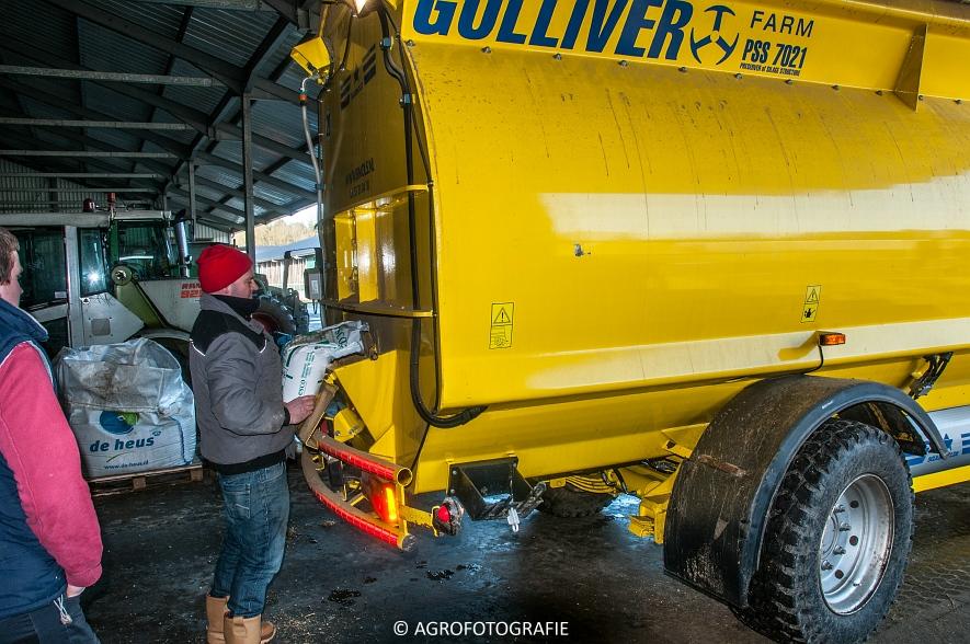 Sgariboldi Gulliver 7021 (11)