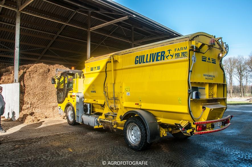 Sgariboldi Gulliver 7021 (13)