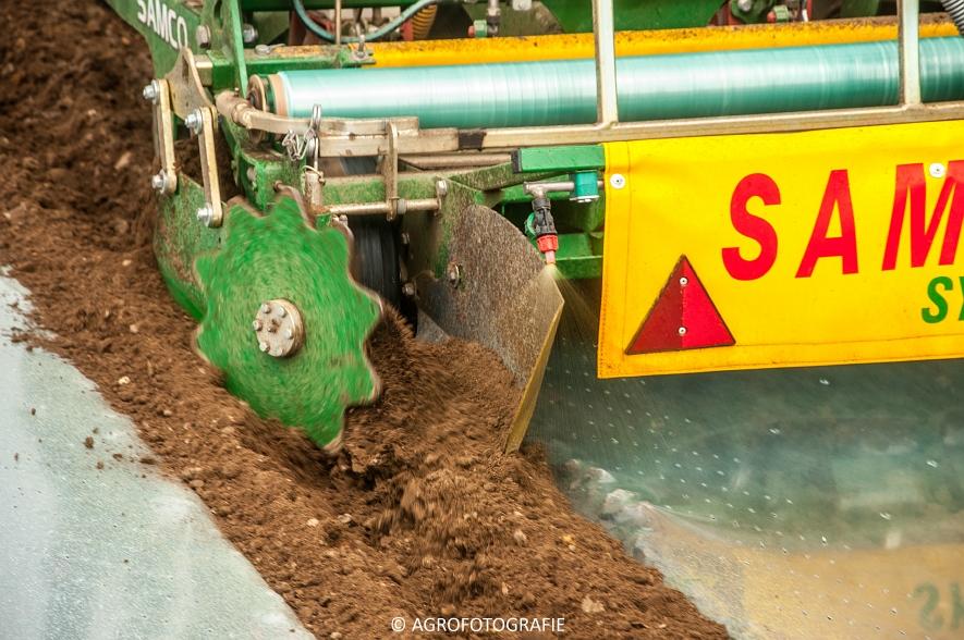 Massey Ferguson 7480 + SAMCO (Maïs onder folie, 21-03-2015, VDD Agri) (12)