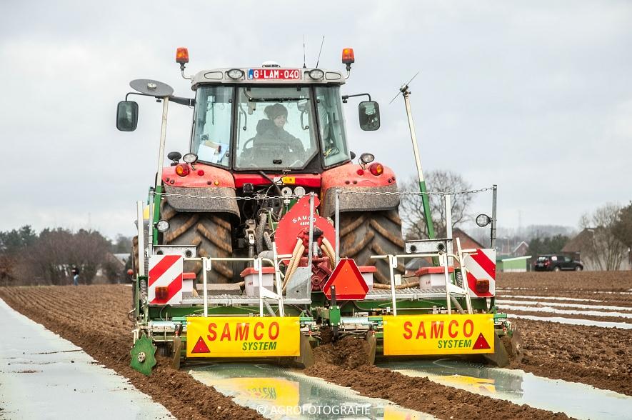 Massey Ferguson 7480 + SAMCO (Maïs onder folie, 21-03-2015, VDD Agri) (13)