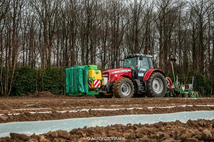 Massey Ferguson 7480 + SAMCO (Maïs onder folie, 21-03-2015, VDD Agri) (17)