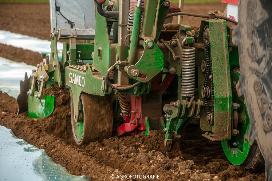 Massey Ferguson 7480 + SAMCO (Maïs onder folie, 21-03-2015, VDD Agri) (19)