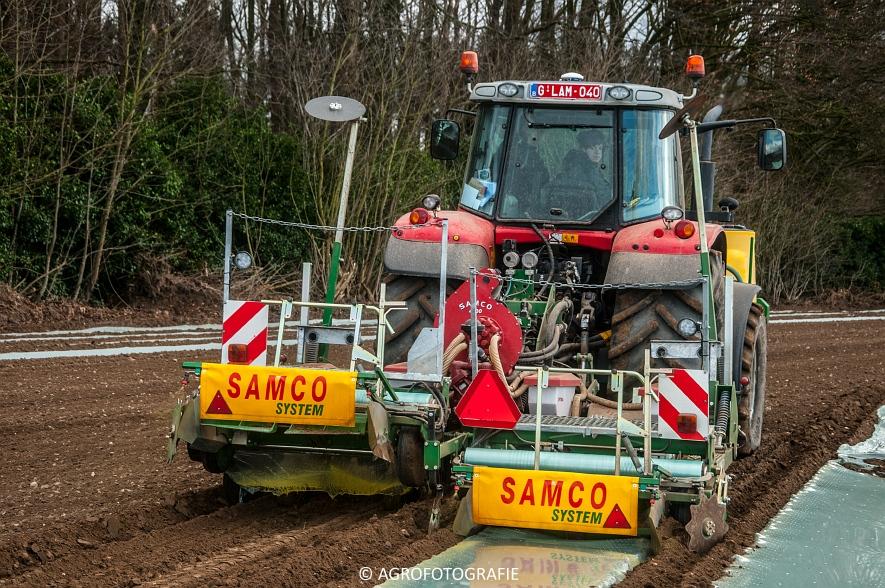 Massey Ferguson 7480 + SAMCO (Maïs onder folie, 21-03-2015, VDD Agri) (20)