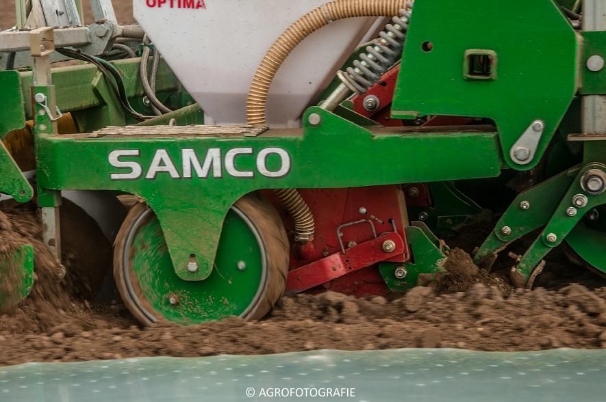 Massey Ferguson 7480 + SAMCO (Maïs onder folie, 21-03-2015, VDD Agri) (4)