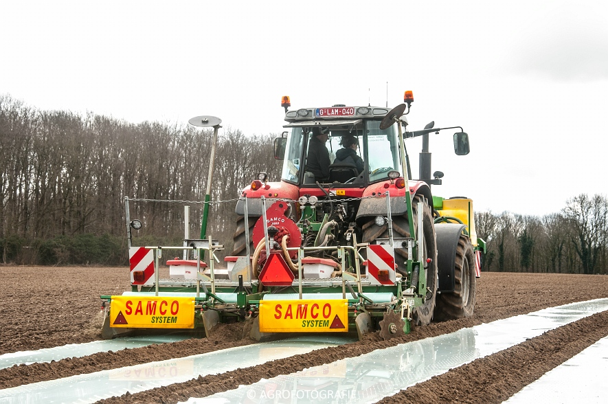 Massey Ferguson 7480 + SAMCO (Maïs onder folie, 21-03-2015, VDD Agri) (5)