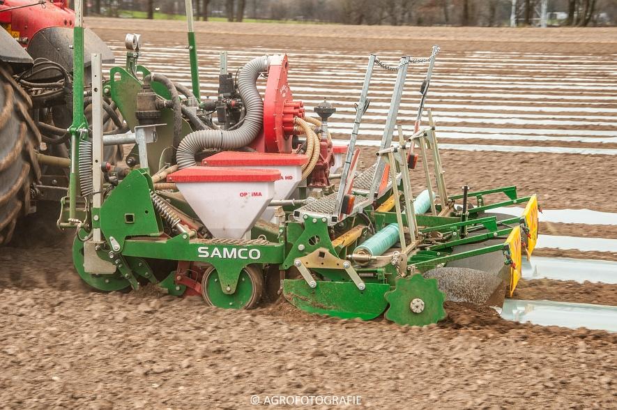 Massey Ferguson 7480 + SAMCO (Maïs onder folie, 21-03-2015, VDD Agri) (9)