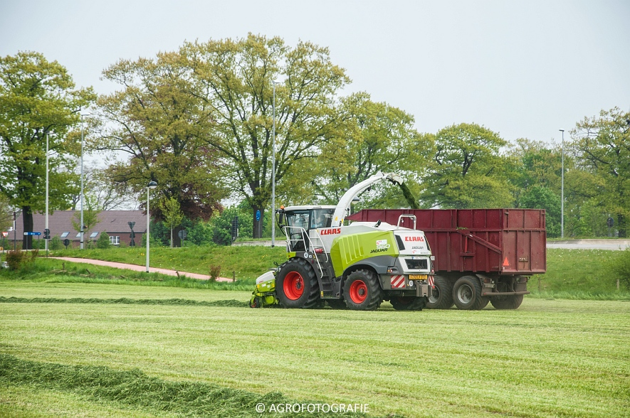 Claas Jaguar 960 (gras, Winters, 02-05-2015) (14)
