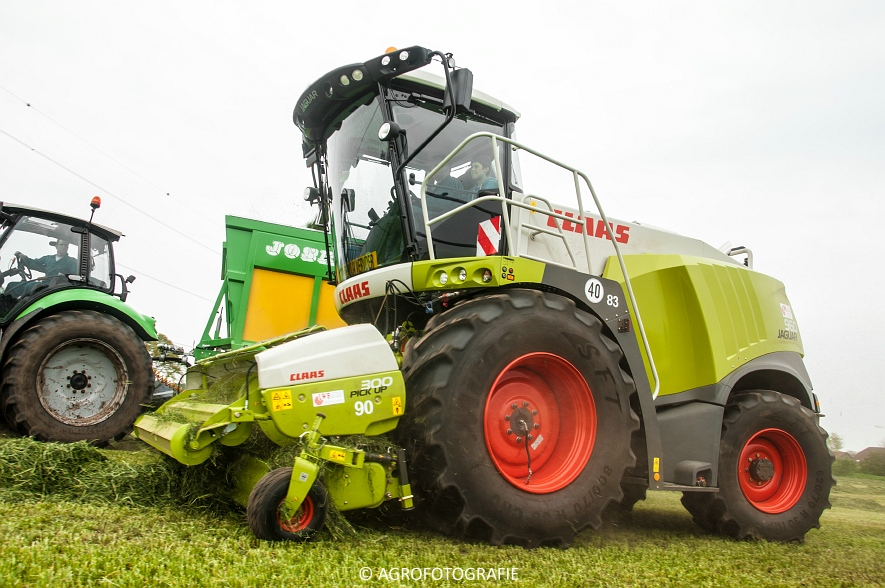 Claas Jaguar 960 (gras, Winters, 02-05-2015) (46)