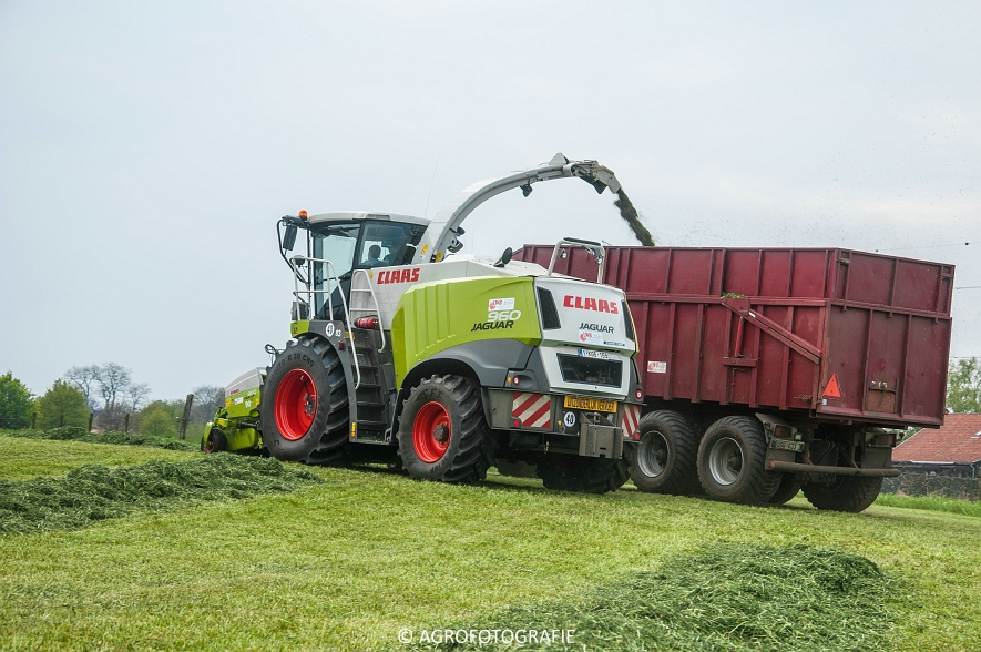 Claas Jaguar 960 (gras, Winters, 02-05-2015) (9)