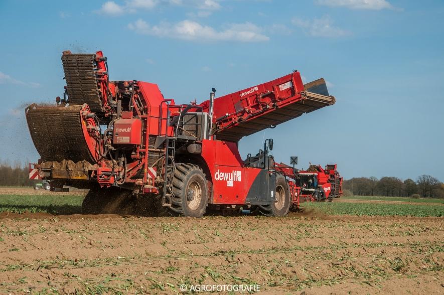 Dewulf RA3060 (Schorseneren, 15-04-2015) (2)