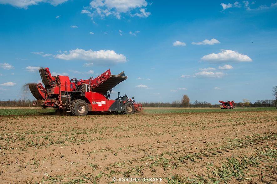 Dewulf RA3060 (Schorseneren, 15-04-2015) (21)