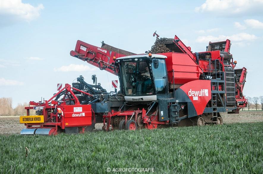 Dewulf RA3060 (Schorseneren, 15-04-2015) (28)