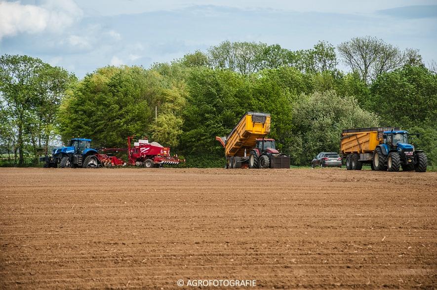 New Holland T8.390 + Grimme GF800 en GL860 & New Holland T8050 + Amazone Centaur 6001 (Koolen, 09-05-2015) (55)