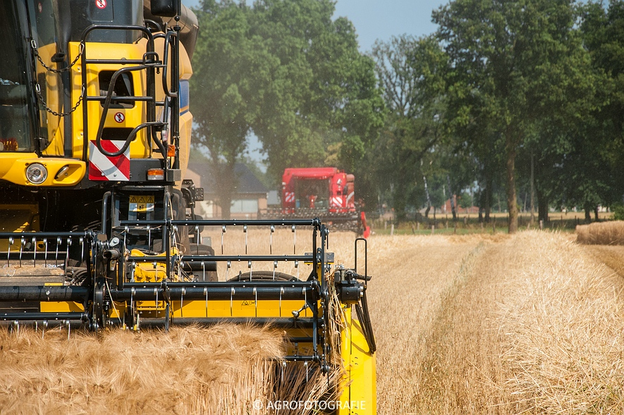 New Holland CX 7090 & Laverda M303 (Graan, 03-07-2015) (2)
