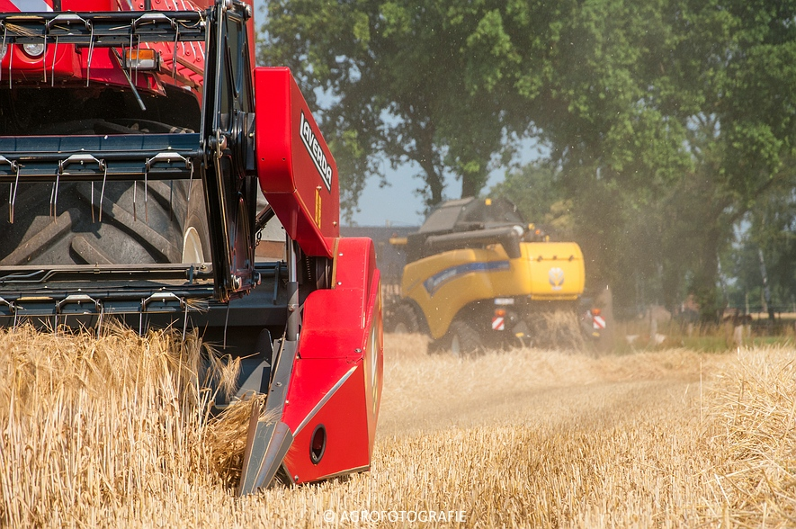 New Holland CX 7090 & Laverda M303 (Graan, 03-07-2015) (40)