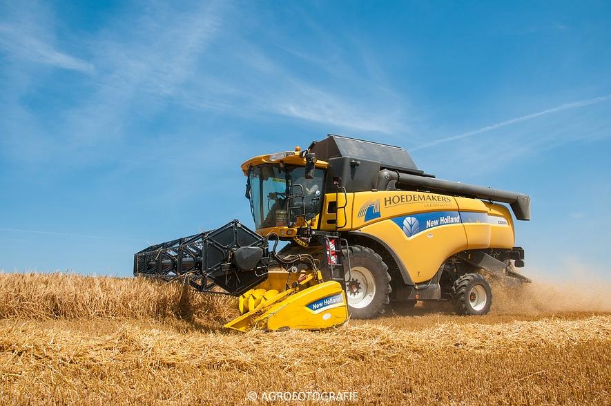 New Holland CX 8060 + Fendt & Miedema (Graan, 11-07-2015, Hoedemakers) (20)