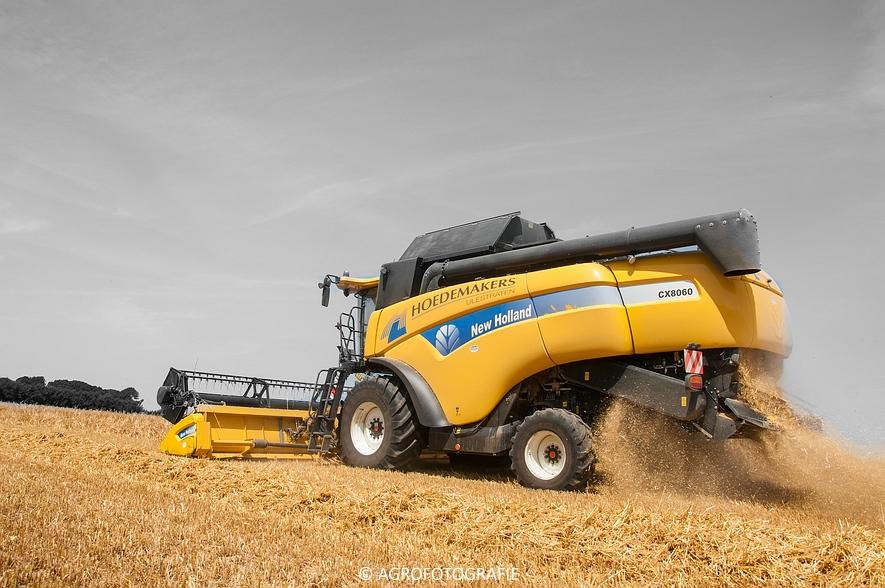 New Holland CX 8060 + Fendt & Miedema (Graan, 11-07-2015, Hoedemakers) (22)