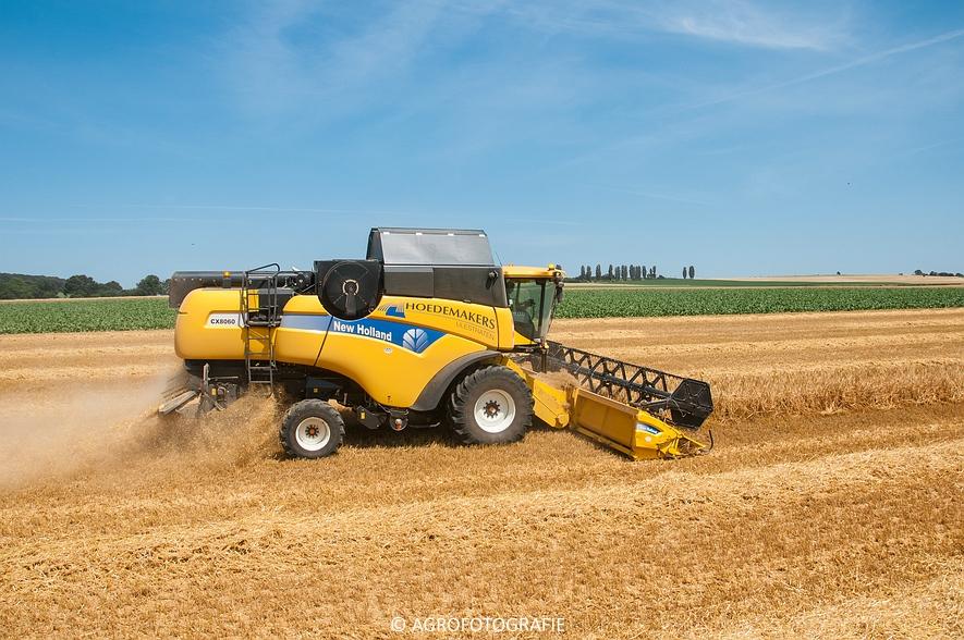 New Holland CX 8060 + Fendt & Miedema (Graan, 11-07-2015, Hoedemakers) (38)