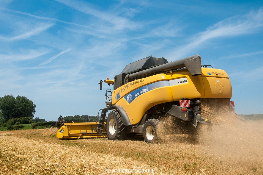 New Holland CX 8060 + Fendt & Miedema (Graan, 11-07-2015, Hoedemakers) (60)